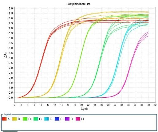 qpcr (实时荧光定量)